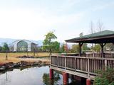 大和高田市総合公園