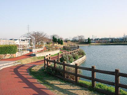 近鉄南大阪線 磐城駅