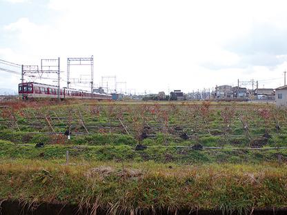 近鉄京都線 新祝園駅