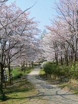 けいはんな記念公園 <br>(京都府立関西文化学術研究都市記念公園)