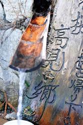 0904 東吉野村/島崎 照章 さん 章 さん