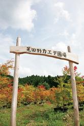 0910 菟田野/矢野 正善 さん