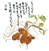1002 清澄/榎森 彰子 さん