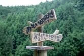1007 橿原市/水谷 道子 さん