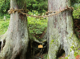 1308 木工作家/森本 英雄さん