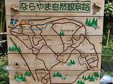 1707_奈良・人と自然の会 副会長 森 英雄 さん